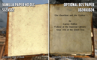 Optional Inventory Paper Texture - PAGE