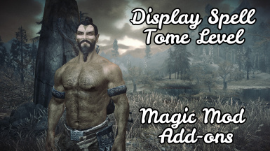 Display Spell Tome Level - Magic Mod Add-ons