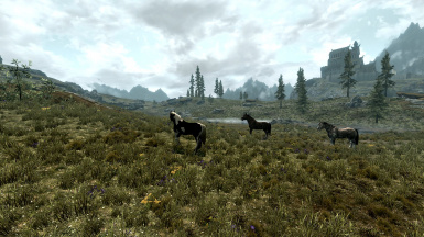 Morthal Swamps