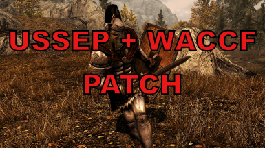 New Legion USSEP and WACCF Patch