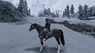 Immersive Real Horses