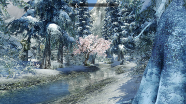 Skyrim Aesthetic Overhaul