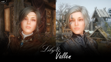 Lily and Vallen - CotR Presets