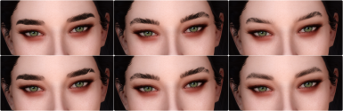 Kalilies Brows