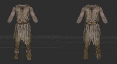 Fixed Beggar Clothing Meshes