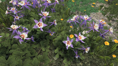 Cathedral - 3D Mountain Flowers