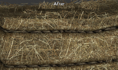 Color looks more like hay now