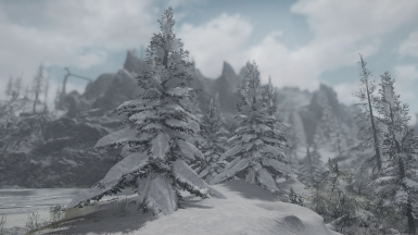 Heavy snow pines from DLCs