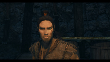 Altmer using fine face textures
