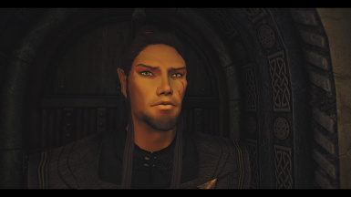 Thank you for porting this fantastic mod to SE