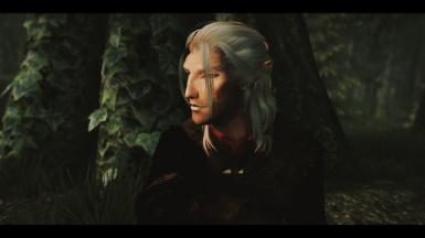 Bosmer with fine face textures for men