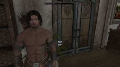 Brodie Fine face mod for SSE