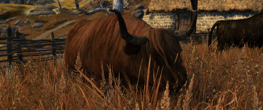 Shaggycows - SkyTest Patch 4K (He was orange this morning!) =]