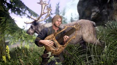 plays music for the deer