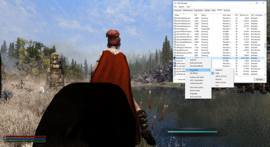 Skyrim Priority SE V1 - Does What Is Says...