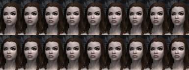 Imperial - Nose options