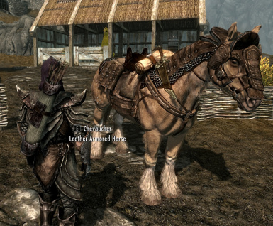 Leather armored horse