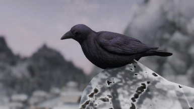 Crows- Mihail Monsters and Animals (MIHAIL SSE PORT)