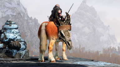 With AllGUD installed, certain items will be displayed on your character or horse