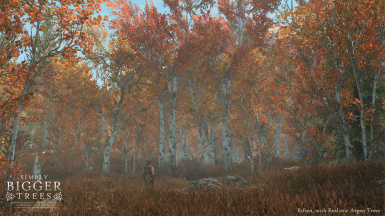 Riften with realistic aspen trees mod