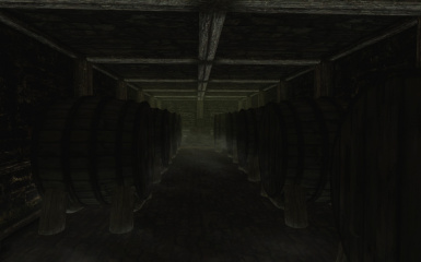 Riften Mead Cellar Interior 2