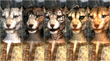 Female Khajiit Presets