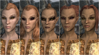 Female Wood Elf Presets