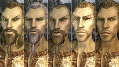 Male High Elf Presets