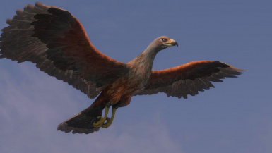 Hawk Replacer- Mihail Monsters and Animals (MIHAIL SSE PORT)
