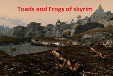 Toads and Frogs of Skyrim
