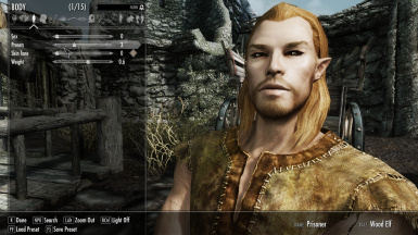 Finrod - Wood elf - male 4