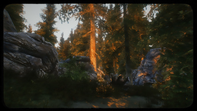 how to download an enb for skyrim special edition
