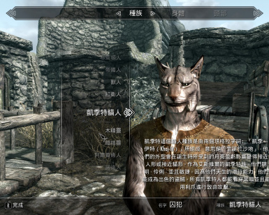 Unofficial Chinese Translation for Skyrim Special Edition