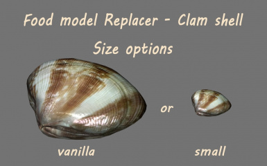 2-3 Food model Replacer - Clam shell