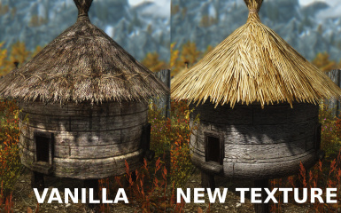 Apiary Texture Comparison