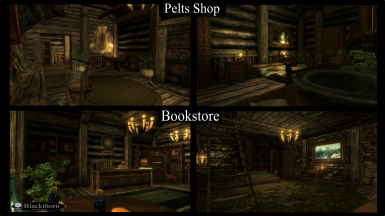 BlackthornPeltsBookShops