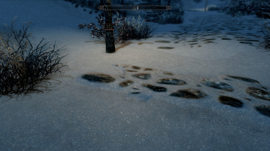 Nordic Snow without SE Snow Shader