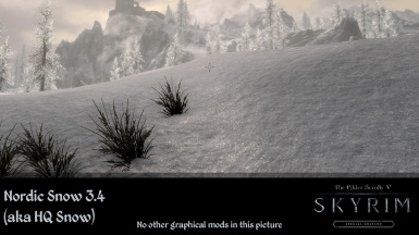 Nordic Snow (aka HQ Snow Texture) at Skyrim Special Edition