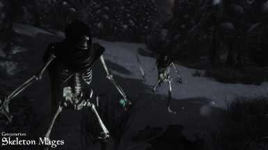 Conjuration Skeleton Mages