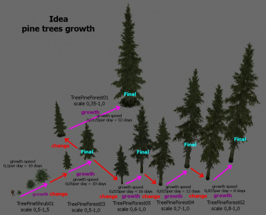 old idea for pine grow