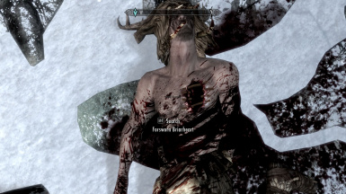 Unofficial Skyrim Special Edition Patch at Skyrim Special