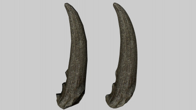 Horker Tusk Before After