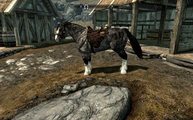 Horse Texture Replacer