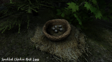 Speckled Chicken Nest Eggs