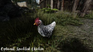 Optional Speckled Chicken 2k