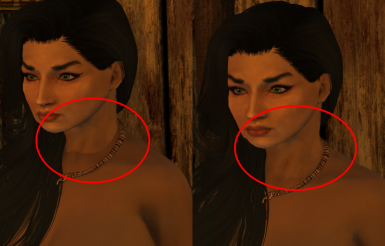 Neck Seam Fix - Guide to using Skyrim Special Edition - Oldrim CBBE  - CBBE Vanilla Outfits - WICO