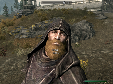 Gold Beard a Grey Beard Skyrim Special Edition