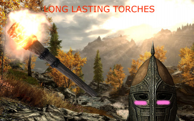 Long Lasting Torches