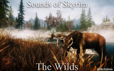 Sounds of Skyrim - The Wilds