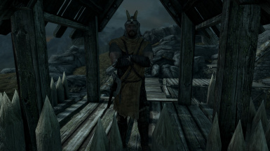 Guards of the North - Varied Armour and Weapons w. Hold Specific Equipment